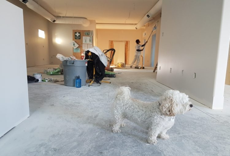 Renovating a home